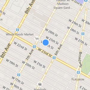 Cat Veterinarian Manhattan Map